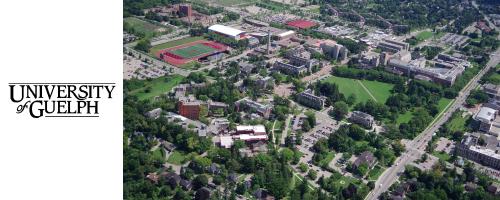 ゲルフ大学