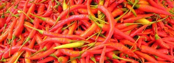 chilli-pepper-449_960_720-e1478750564758