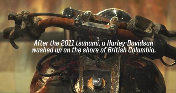 -1  Harley Davidson Canada