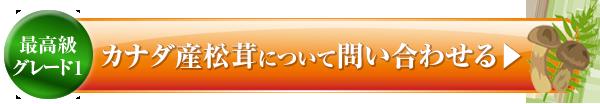 2015-08-13_18-20-30