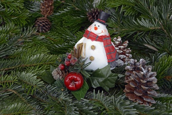 snow-man-1813807_960_720