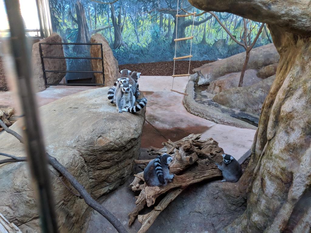 トロント動物園