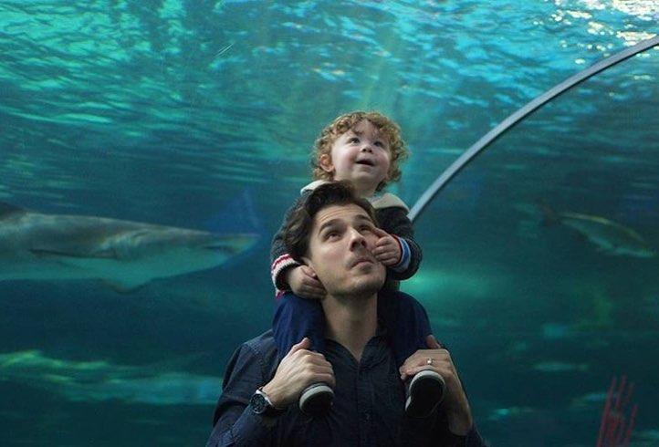 リプリーズ水族館