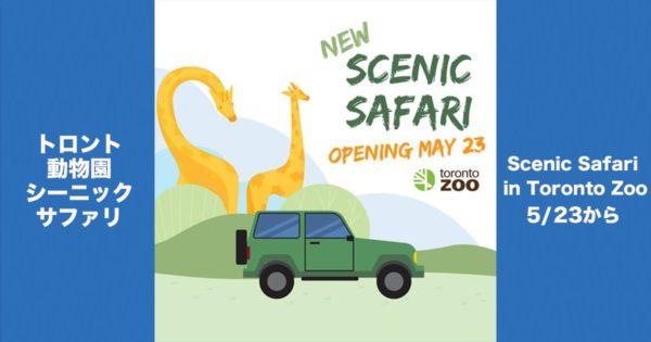 トロント動物園シーニック・サファリ/ Scenic Safari in Toronto Zoo @ トロント動物園(Toronto Zoo) | Toronto | Ontario | カナダ