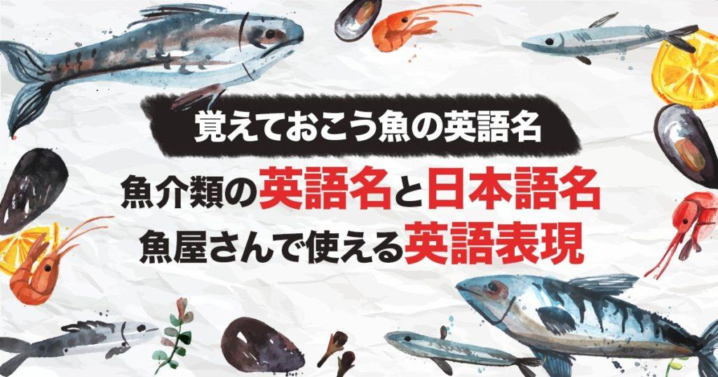 【覚えておこう魚の英語名】カナダで買える魚介類の英語名と日本語名・魚屋さんで使える英語表現